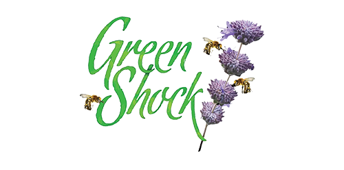 15 greenshock-seeds