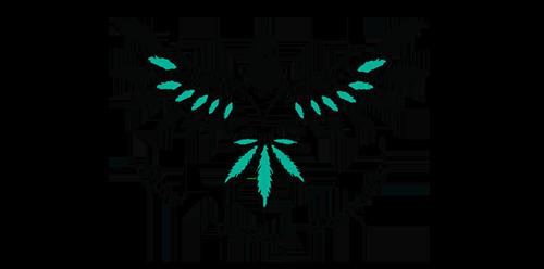 21 final+bird+logo